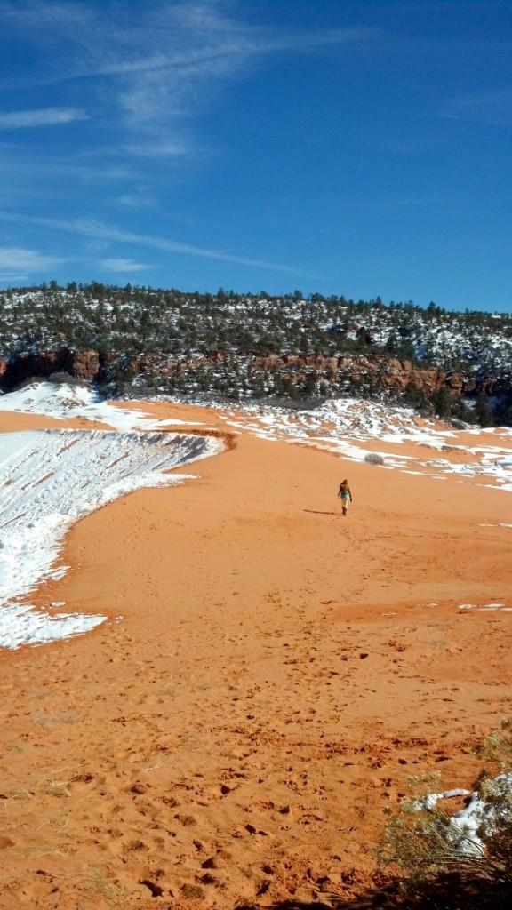 Coral Pink Sand Dunes Utah STGnews.com photo