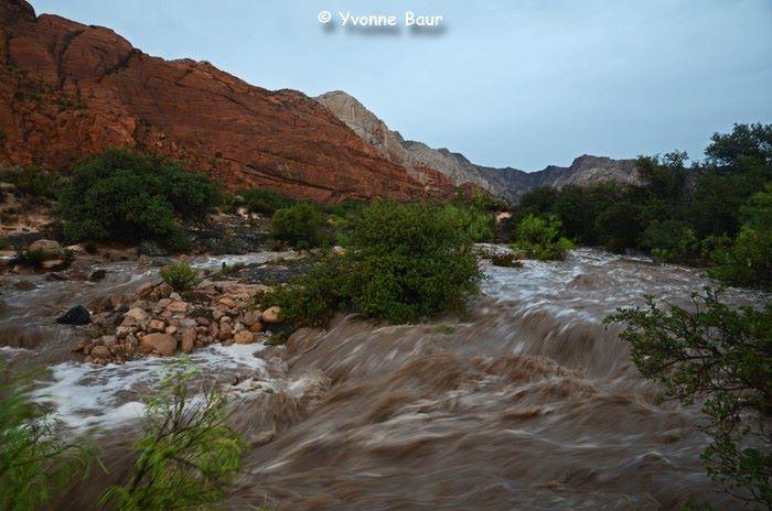 Flash flood Snow Canyon State Park STGnews