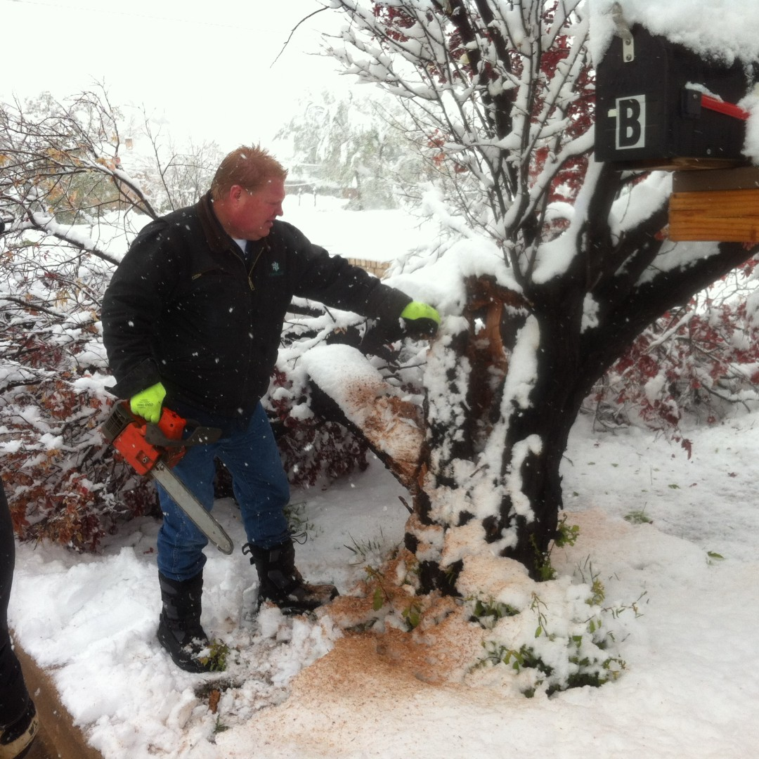 Residents took chainsaws to tree branches buckled by the weight of spring snowfall, Cedar City, Utah, May 11, 2014 | Photo by Kevin Robison, St. George News