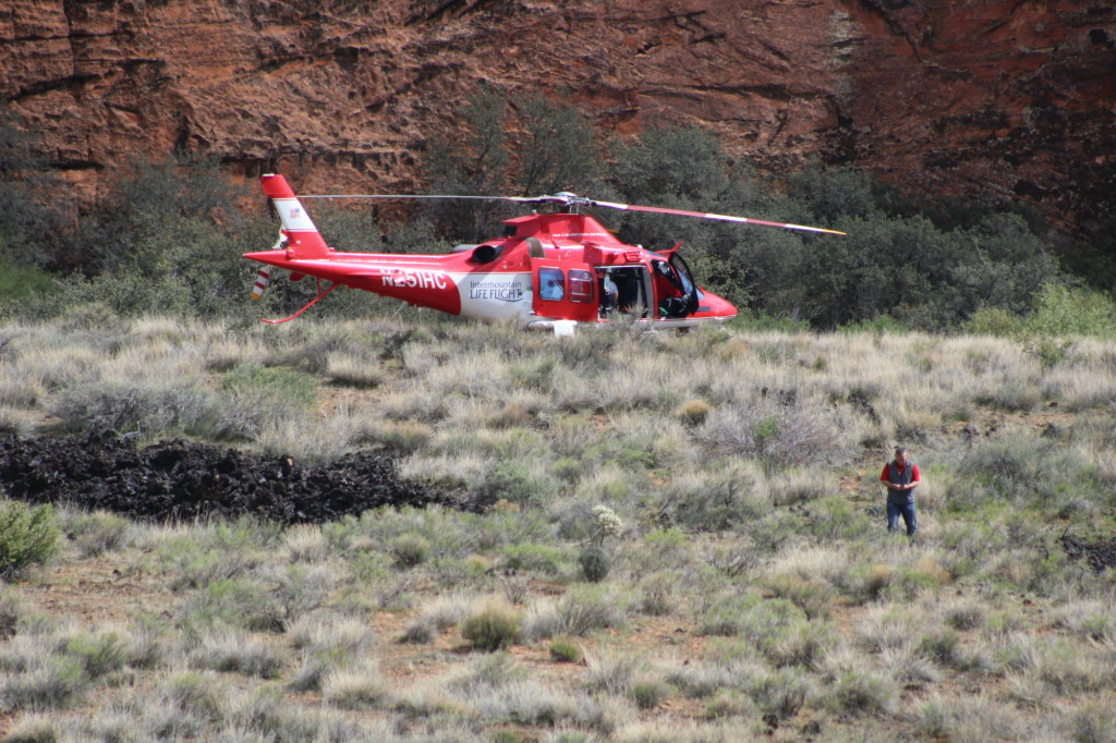 ivins cougar women Crews scale cliffs in snow canyon to rescue man injured while rappelling  personnel from ivins ems hiked up a  woman rappels cougar cliffs on.