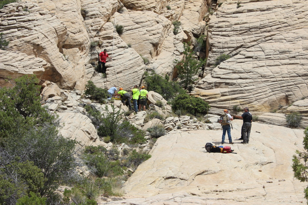 Dog Rescue Utah Canyon